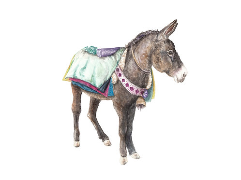 Colorful Donkey Peru Morocco Limited Edition Print 8.5x11 Watercor