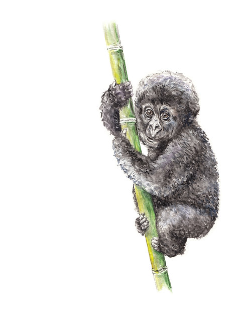 Baby Gorilla Limited Edition Print 8.5x11 Watercolor Jungle Painting