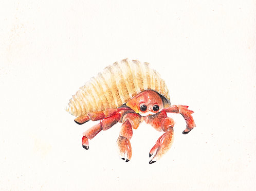 Ocean Hermit Crab Under the Sea Limited Edition Print 8.5x11 Nautical Beach