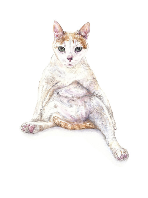 Sexy Fat Cat Ltd Ed Print Watercolor