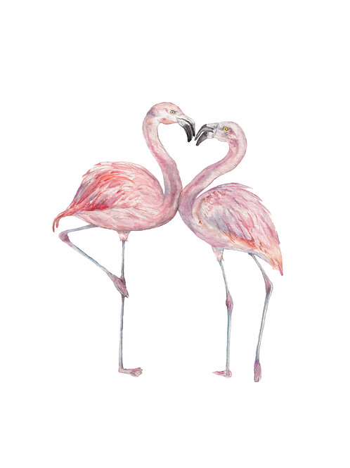 Flamingo Watercolor Painting Bird Limited Edition Bird Print: choose from 2