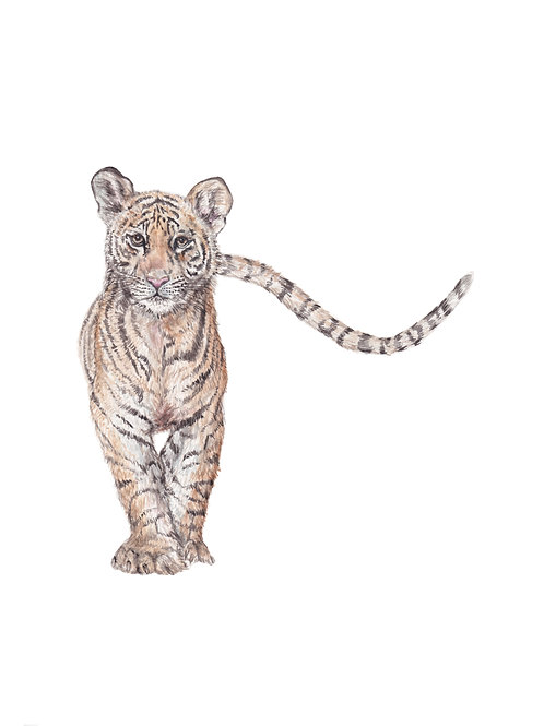 Tiger Cub Limited Edition Print 8.5x11 Watercolor - choose from 3 images