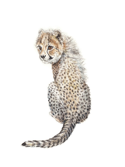 Cheetah Limited Edition Print 8.5x11 Watercolor