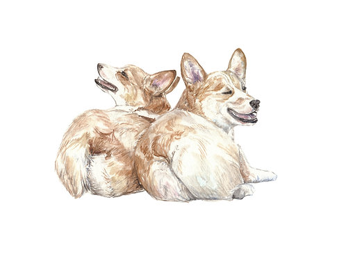 Corgi - choose from 4 images! Ltd Ed Print Watercolor