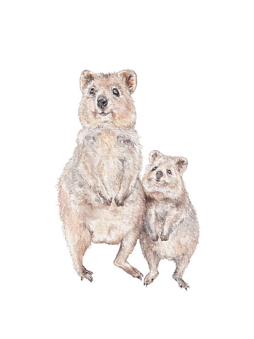 Quokka Watercolor Print 8.5x11 Limited Edition signed