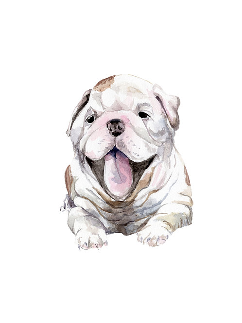 Bulldog Limited Edition Print Watercolor Choose from 3 images