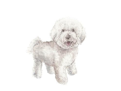 Bichon Dog Limited Edition Print Watercolor