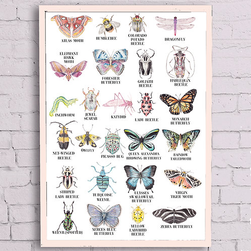 ABC Insects Alphabet Poster