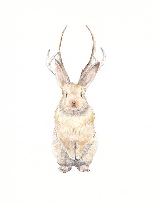 Tall Jackalope Limited Edition Print 8.5x11 Watercolor