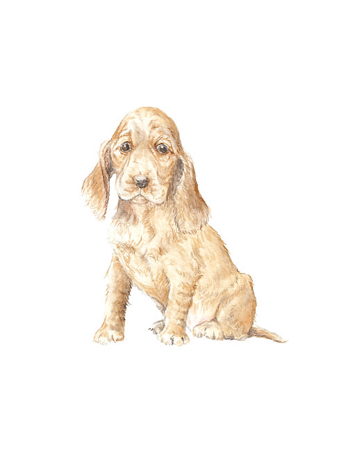 Cocker Spaniels - choose from 3 images! Ltd Ed Print Wate
