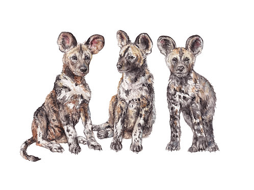 African Wild Dogs 8.5x11 Watercolor Cute Safari Animal Painting