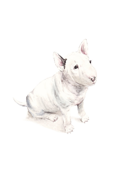 Bull Terrier Limited Edition Print Watercolor Dog - choose from 2