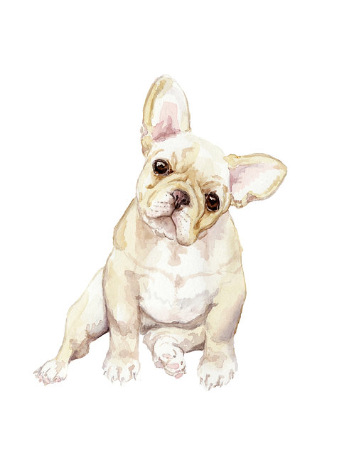 Blonde Frenchies Choose from 4 Images! Ltd Ed Print Watercolor