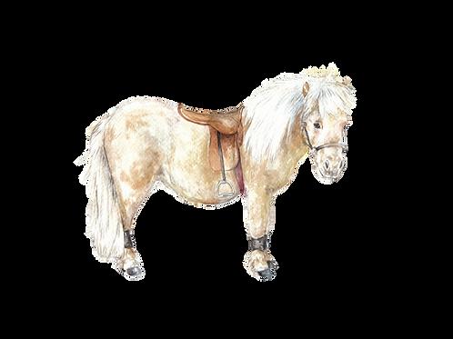 Shetland Pony Equitation Horse Print 8.5x11 Watercolor