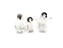 Penguins_edited8.5x11.jpg