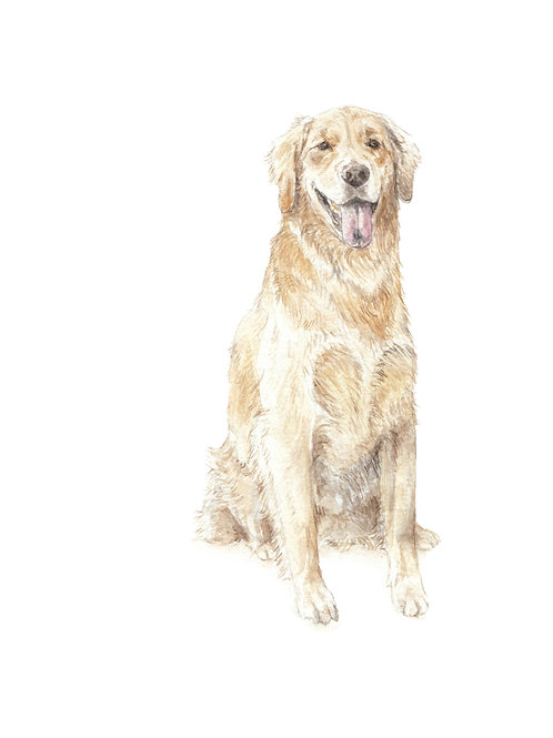 Golden Retriever Dog Limited Edition Print Watercolor Choose from SIX images!