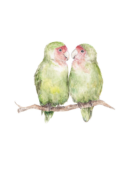Lovebirds Watercolor Limited Edition Print 8.5x11 Bird Painting
