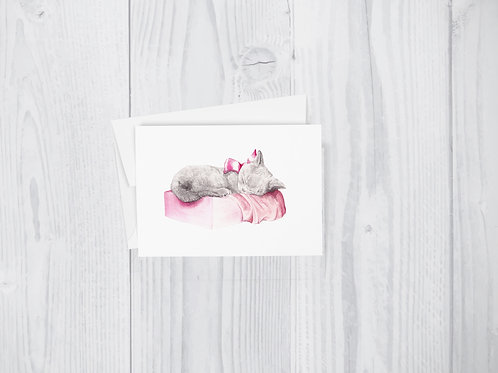 Greeting Card: Sleepy Kitten in a Pink Box Cute Feminine