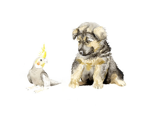 German Shepherd Choose from 2 Images! Ltd Ed Print Watercolor