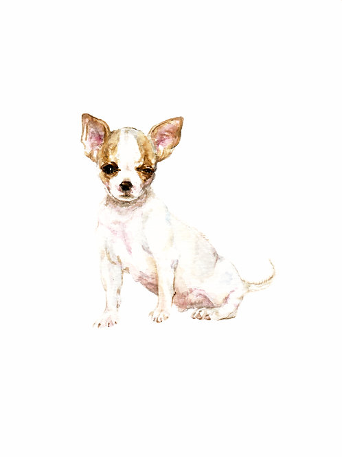 Smooth Coat Chihuahuas - choose from 3! Ltd Ed Print Watercolor