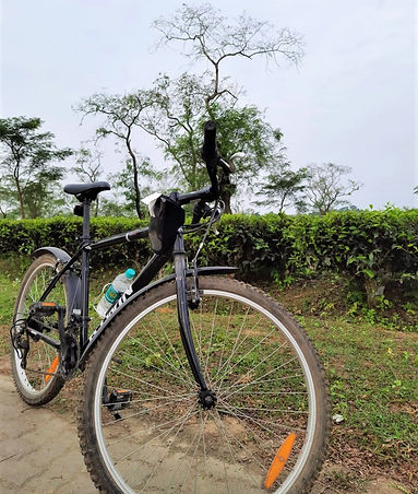 Cycling tour in Northeast India