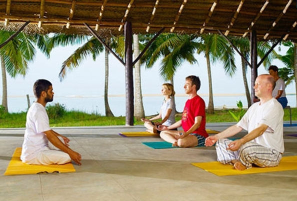 yoga and wellness tour in south india