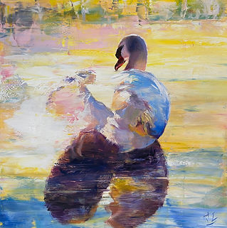 Dissolving Into Light (Swan)