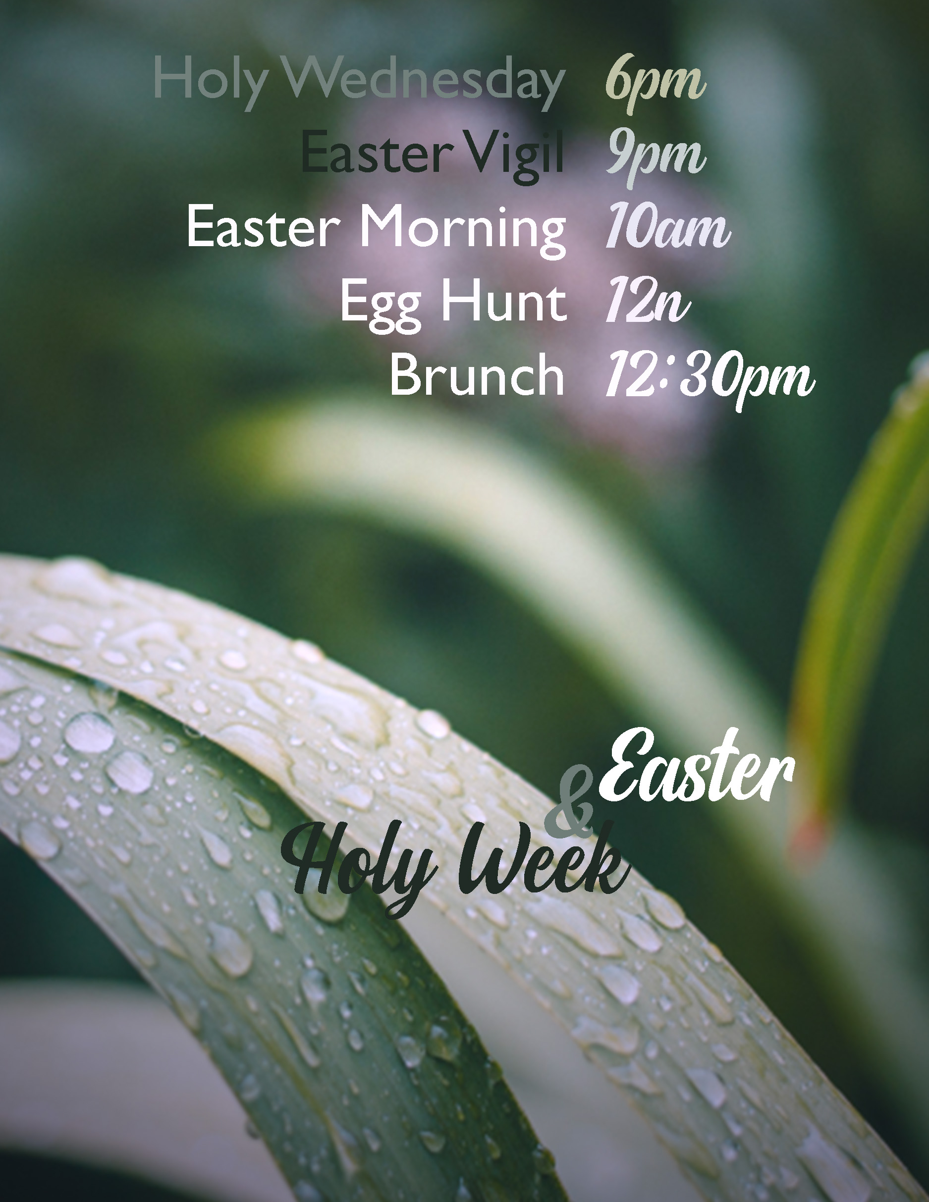 Holy Week and Easter - website