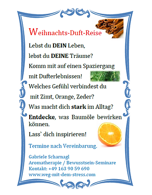 Weihnachts Duft Reise.PNG