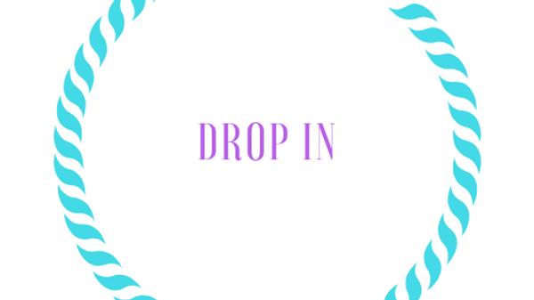 Drop In Fee