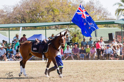 NZ Barbarians Team Physio