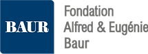 Fond-AE-Baur-logo-low.png