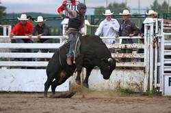 Cochrane Classic Rodeo