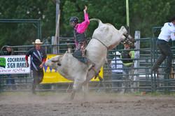 Cochrane Bull Riding