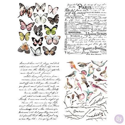 Parisian butterflies - Transfer Pegatina para decoración