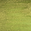 Thumbnail: Magical - Edelweiss Moss Green