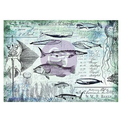 Papel tissue decorativo Nautical
