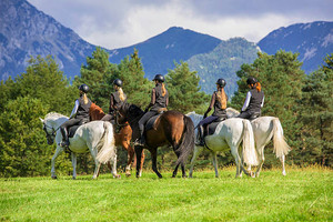 Things to Consider When Going on Horse Riding Tour