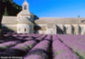 provence_1.jpg