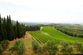 Vale do Ombrone 2-Toscana.jpg