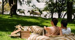 The Royal Livingstone Victoria Falls