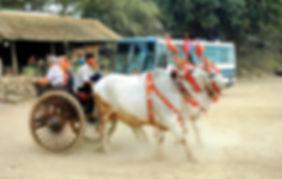 myanmar 11.jpg