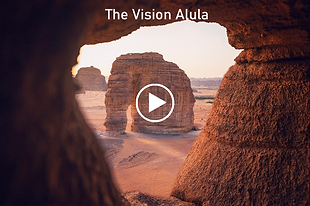 The vision Alula.png