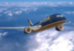 vietnam airlines.jpg