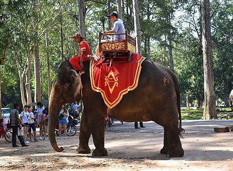 500.Siem-Reap-Cambodia-Templos-de-Angkor