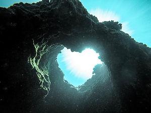 heart nature.jpg