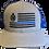 Thumbnail: Gladiator | Blue Stripe