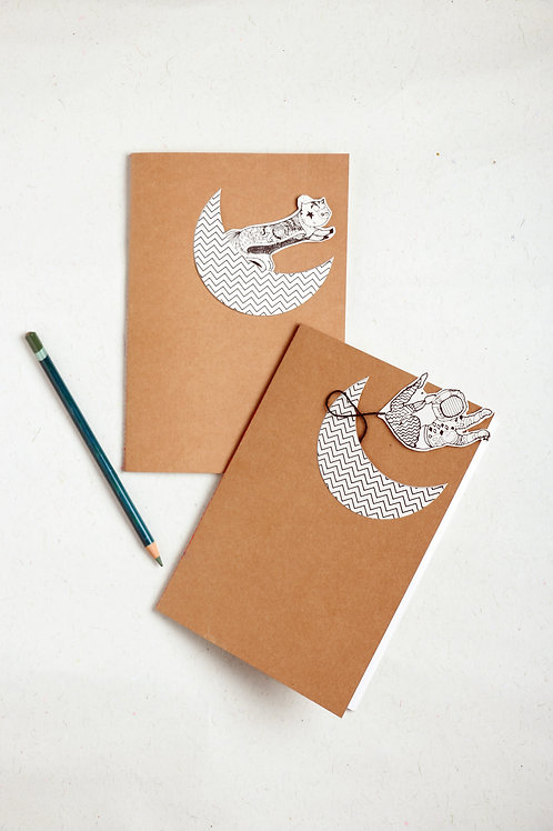 Astral Pony Notebook and Toy: Set of 2