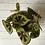 Thumbnail: Begonia Masoniana