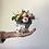 Thumbnail: Sushi di fiori